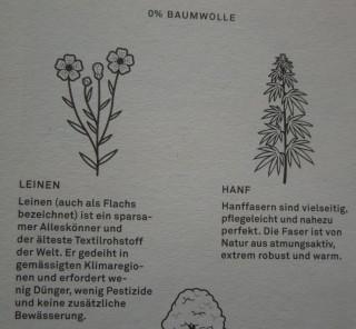 Aus der Freitagbroschüre: Die Multitalente in Sachen Nachhaltigkeit: Leinen und Hanf. Foto: Corinna v. Bodisco